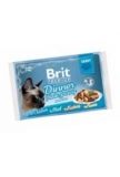 Brit Premium Cat D Fillets in Gravy Dinner Plate 340g