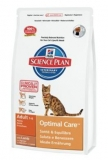 Hill's Feline Dry Adult Lamb&Rice 10kg